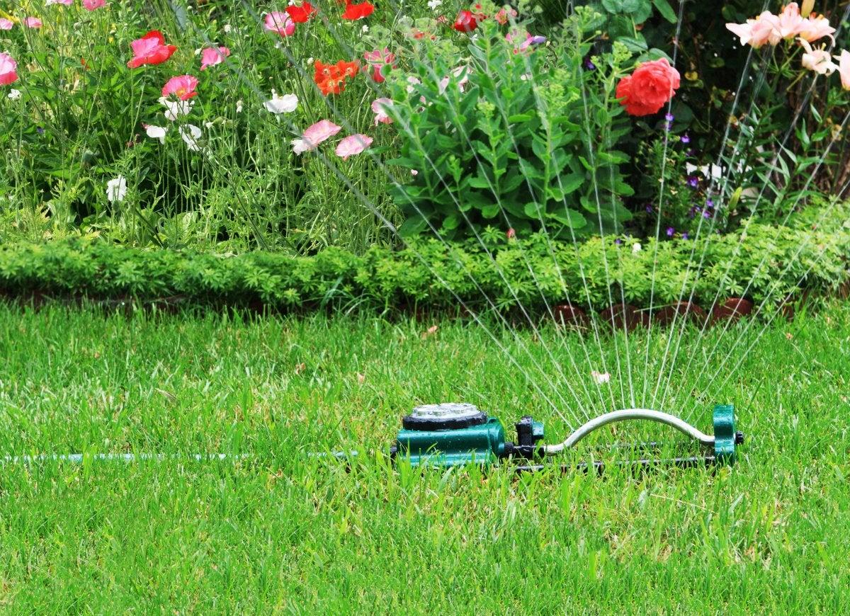 Gardening-myths-1