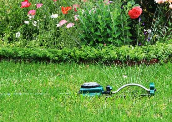 Gardening myths 1