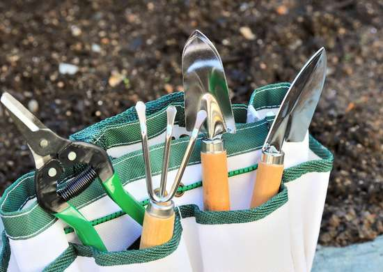 Clean Gardening Tools with Bleach