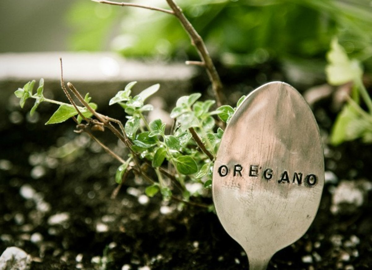 Make diy plant markers with silverware