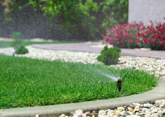 Watering the Lawn Too Much
