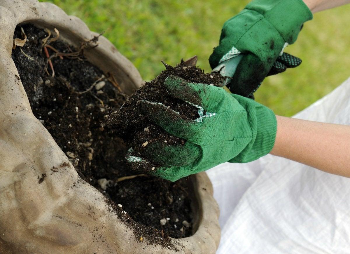 Not testing soil