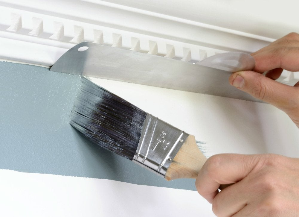 Hyde paint shield in use lg