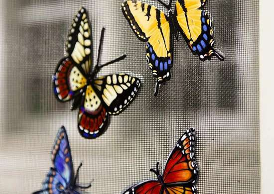Butterfly Magnets for the Screen Door