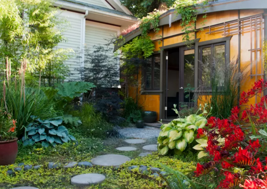 Pick Colorful Plants for a Less Boring Backyard