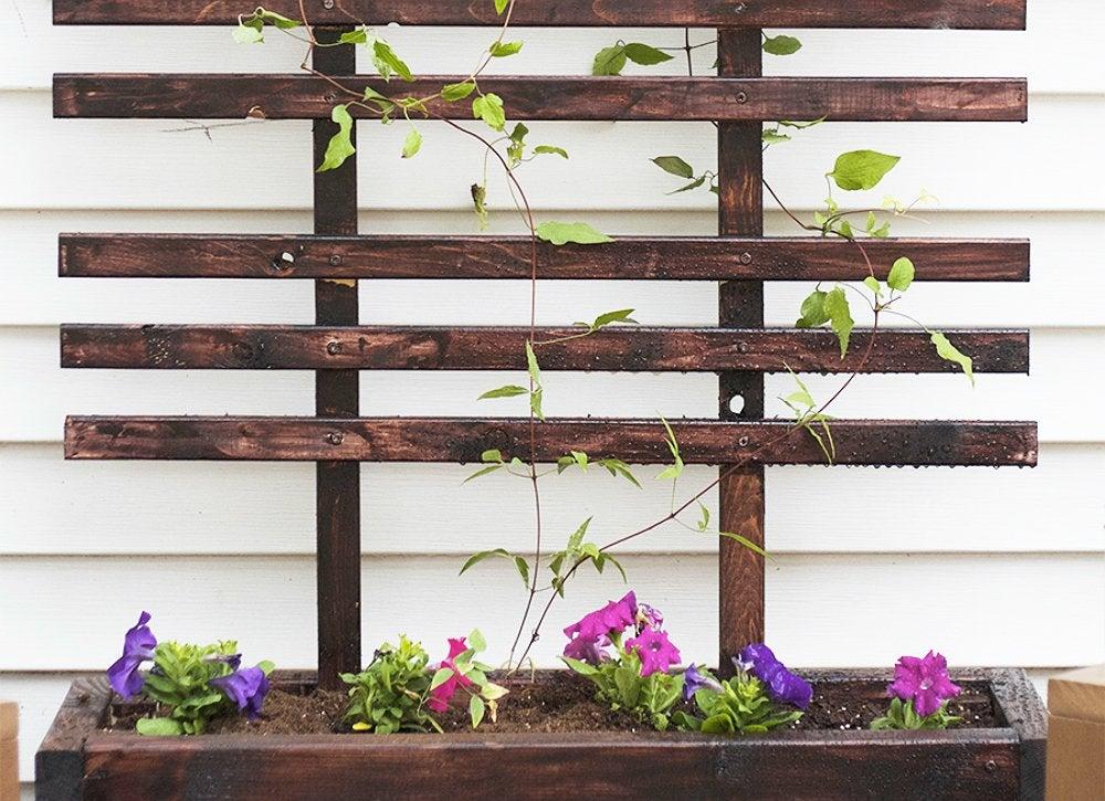 Diy trellis and planter
