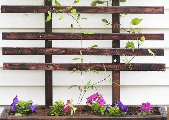 Diy trellis and planter