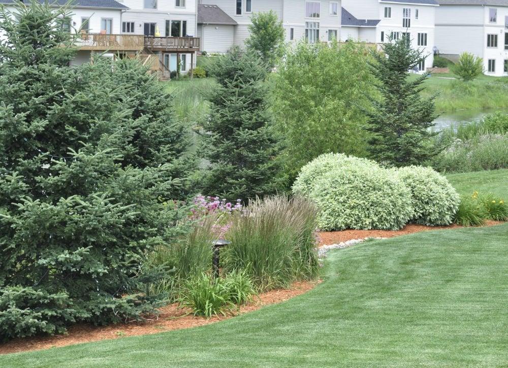 low maintenance landscaping 17 great ideas bob vila