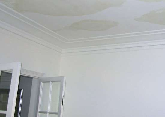 Repair Water Damage Quickly