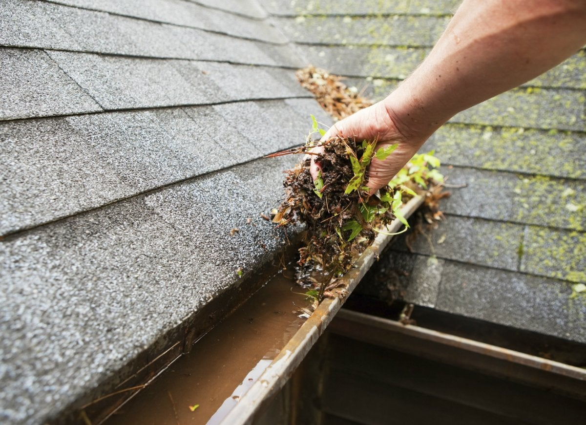 Clean-gutters-regularly