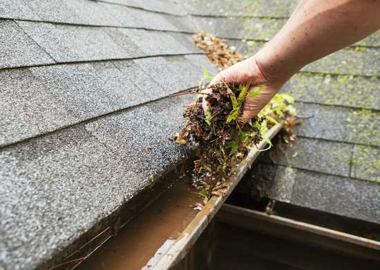 Clean Gutters Regularly