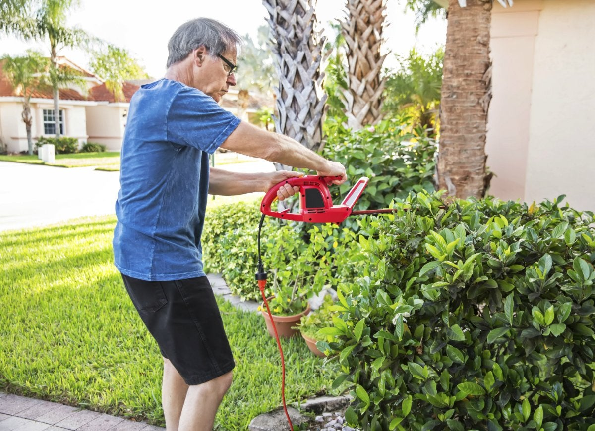 Maintain front yard landscaping
