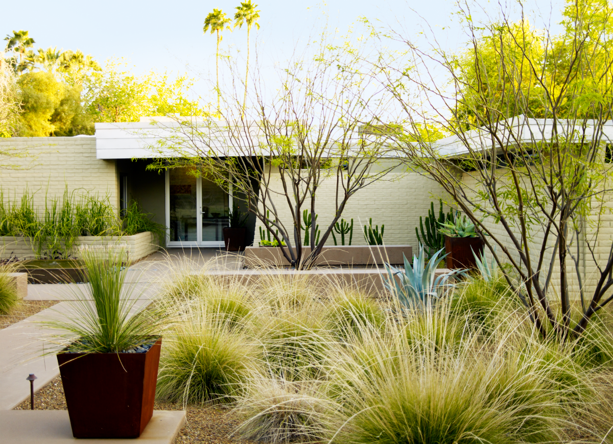 Desert Landscape Ideas: 6 Designs to Copy - Bob Vila