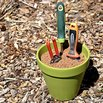 Prevent Rust and Sharpen Garden Tools with a Plant Pot