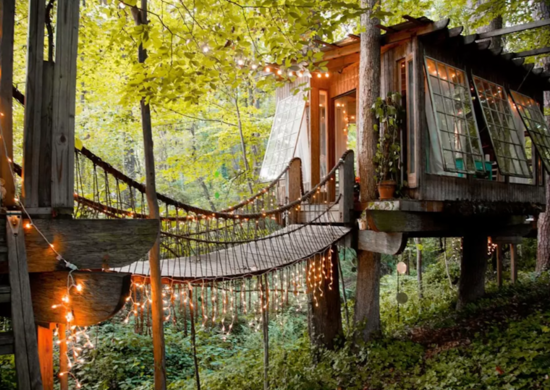 Treehouse guesthouse on Airbnb