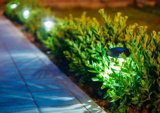 Garden_lights