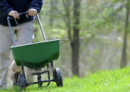 Fertilizing_lawn