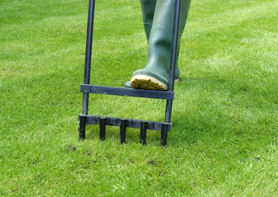 Aerate_the_lawn
