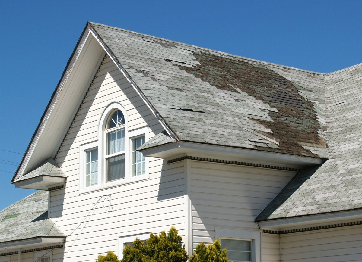 Look for visible roof damage