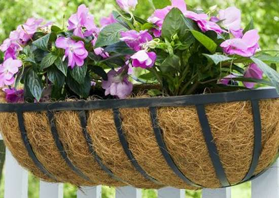 Horse-trough-planter