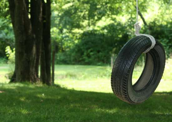 Tire swing   mosquitoes
