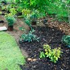 Mulch in Flower and Veggie Beds