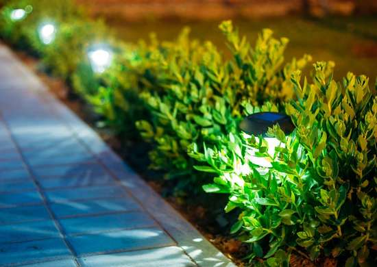 Solar Powered Landscaping Lights