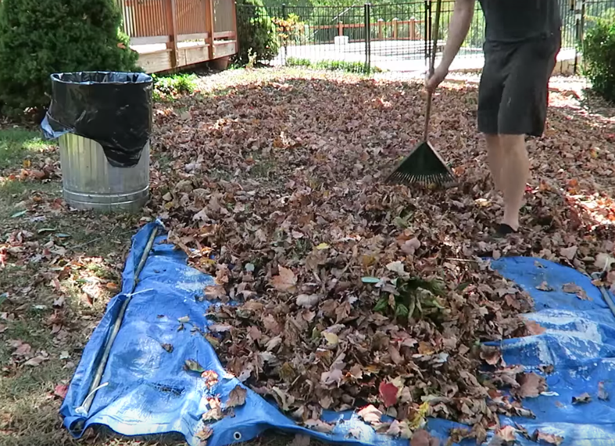 Rake leaves faster with tarp