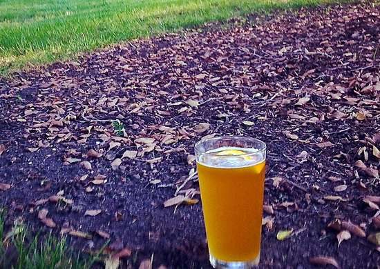 Diy beer garden fertilizer