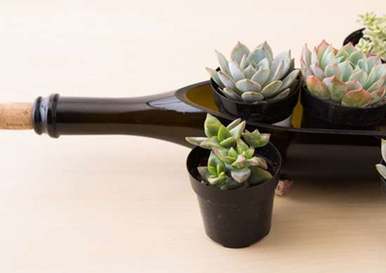 DIY Wine Bottle Planter