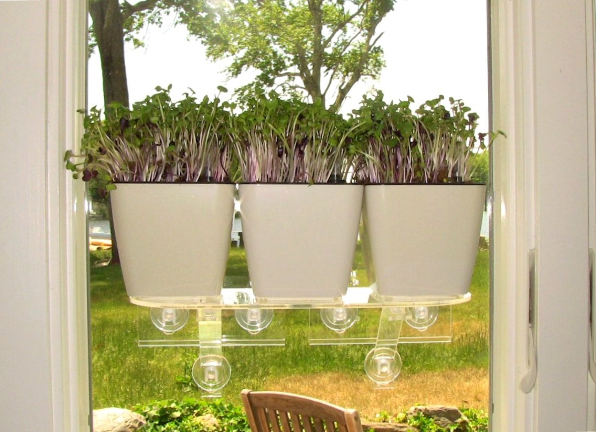 Window garden aquaphoric planter