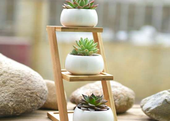Celestte trio ceramic planters bamboo shelf