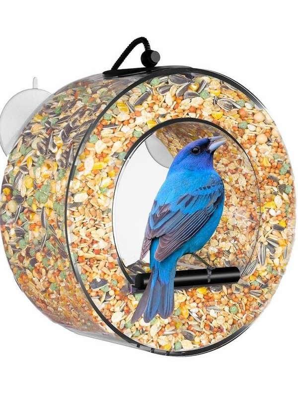 Circle Birdfeeder