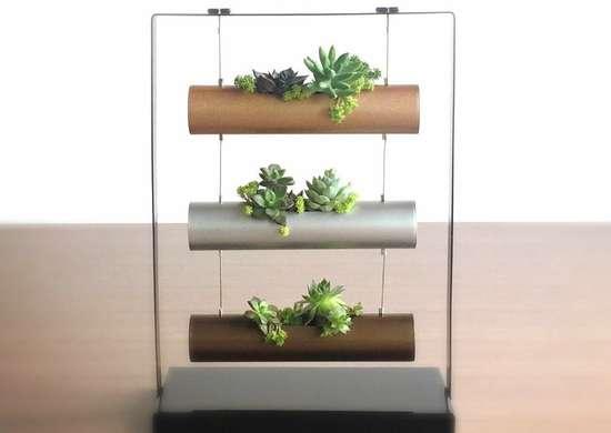 Living-art-succulent-garden