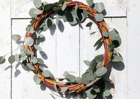 DIY Plant Wreath