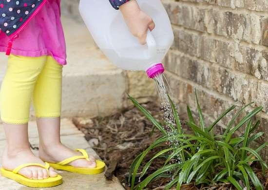 DIY Watering Can