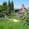 Overgrown Grass in Neighbor's Yard