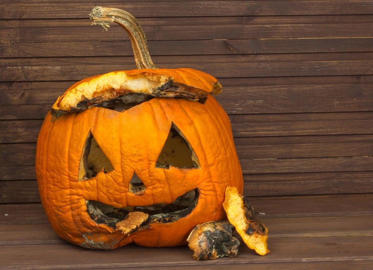 Silica-gel-pumpkin