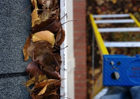 Clogged gutter cleaning