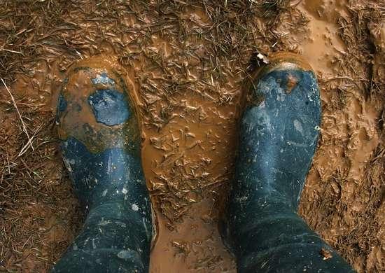 Muddy landscape