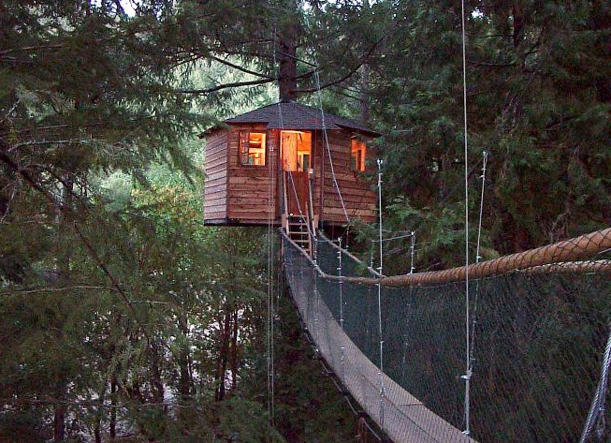 Treehouse bed and breakfast