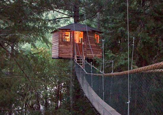 Treehouse-bed-and-breakfast