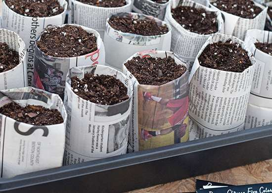 Newspaper seed pots