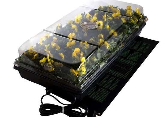 Seed incubator