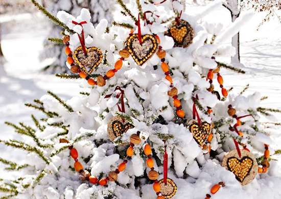 DIY Winter Bird Feeder Garlands