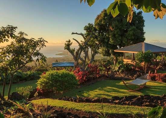 Holualoa gardens