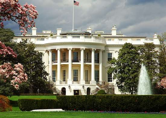 White house cherry blossoms