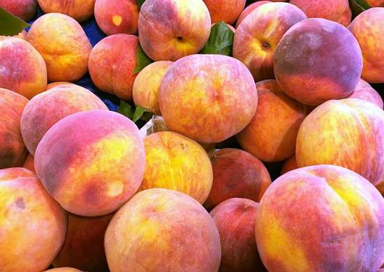 Fresh peaches 590054584 2003x1502