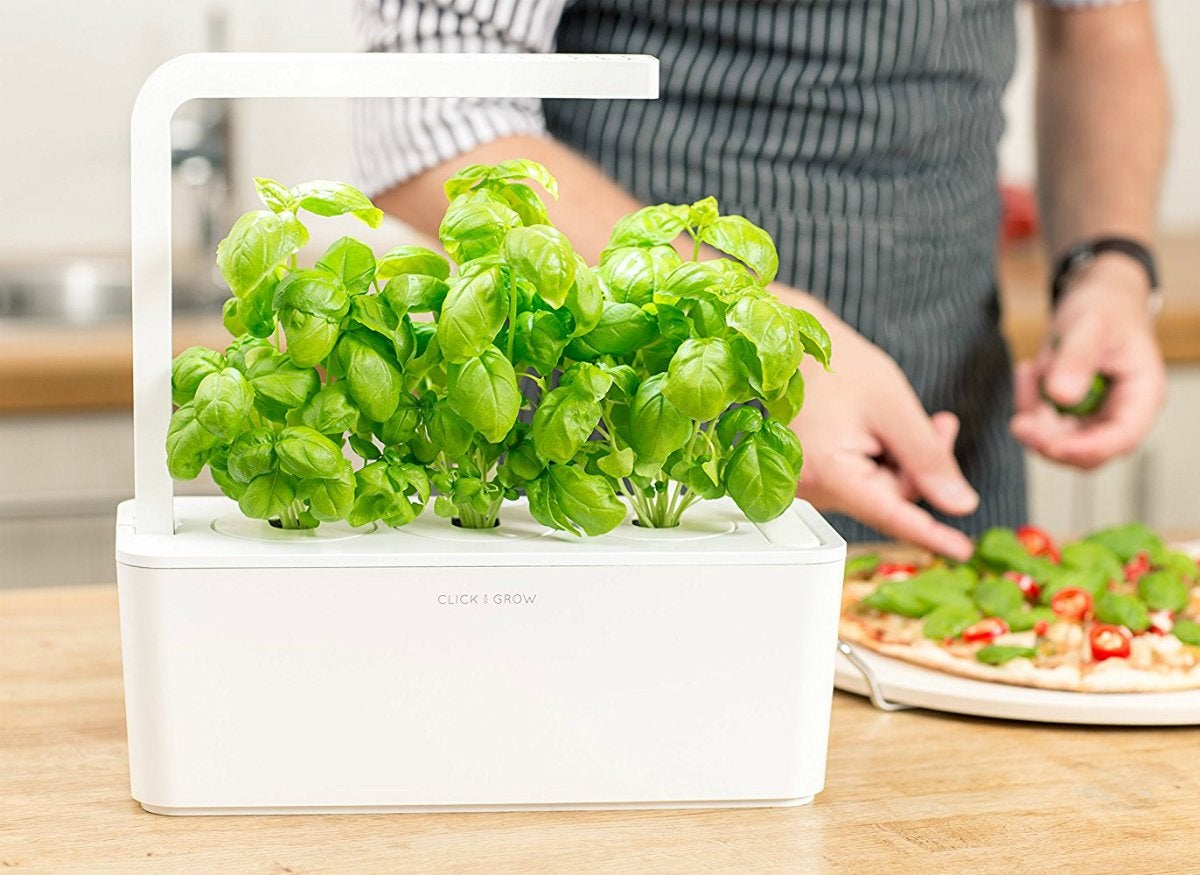 Click grow indoor smart herb garden