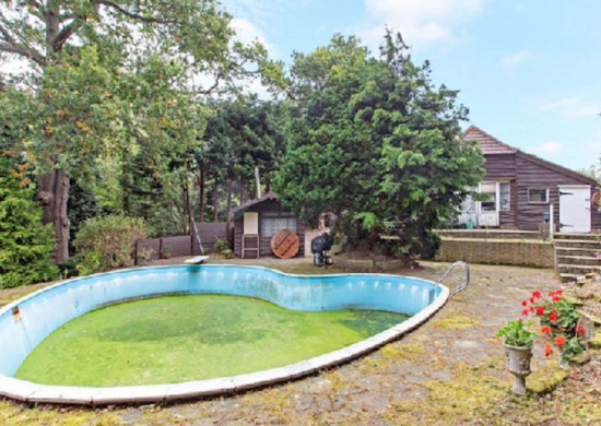 Green-pool-bad-real-estate-photos